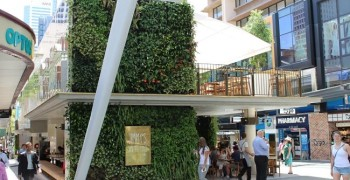 Jimmy's on the Mall leads the way in greenwalls
